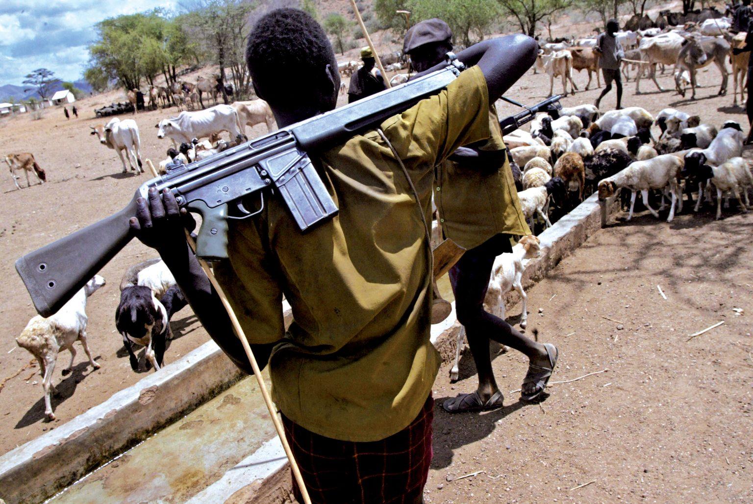Tchad : 27 morts dans de nouveaux combats entre éleveurs et cultivateurs
